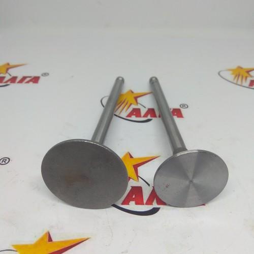 Клапан выпускной CY6102 (4102 01 25)